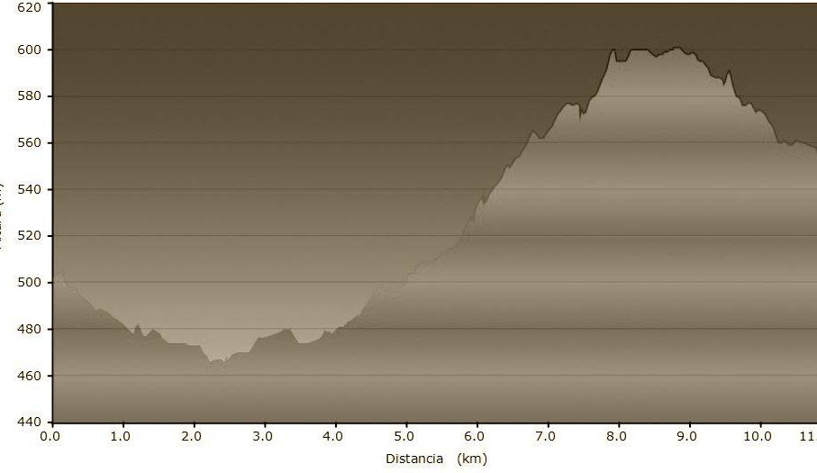 T6-perfil-Vic-Folgueroles